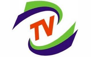 郑州1套新闻综合频道
