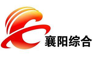襄阳电视台综合频道