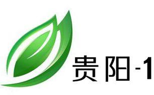 贵阳1频道新闻综合频道